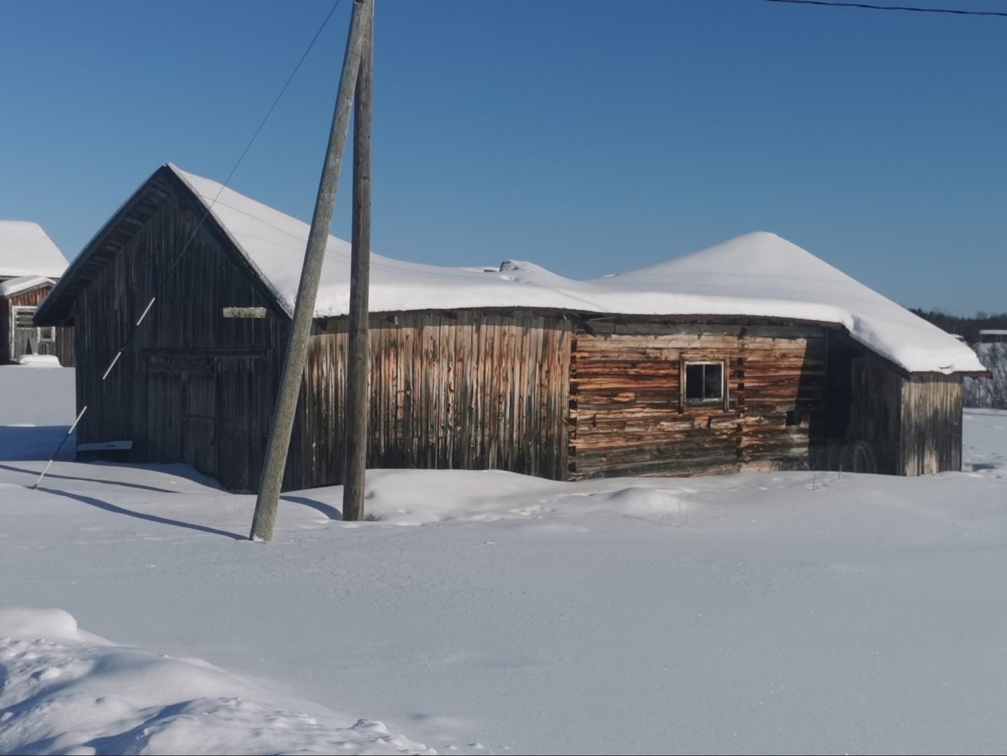A collapsed barn near Juuso's house, used for texture acquisition with Unity Scan