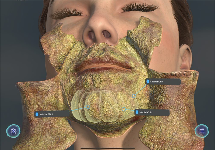 Users can peel back the layers of the skin with the GIA app