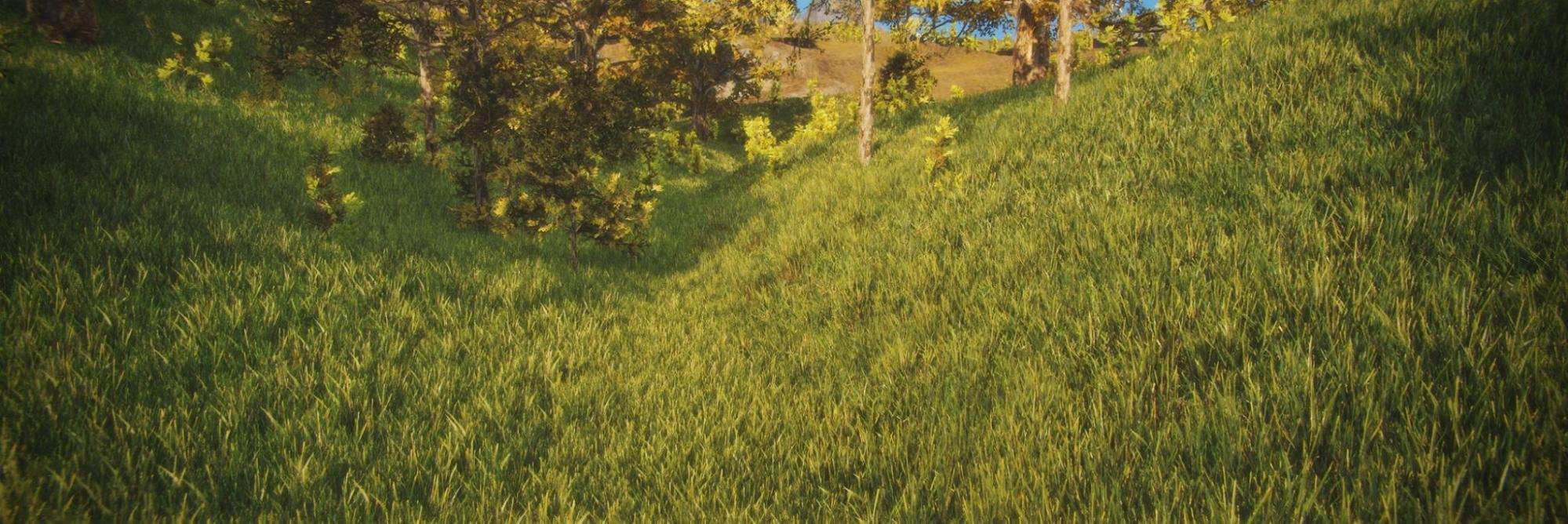 Grassy field made with Unity